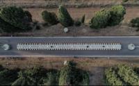 Viale Vini e Cipressi Bolgheri con Drone