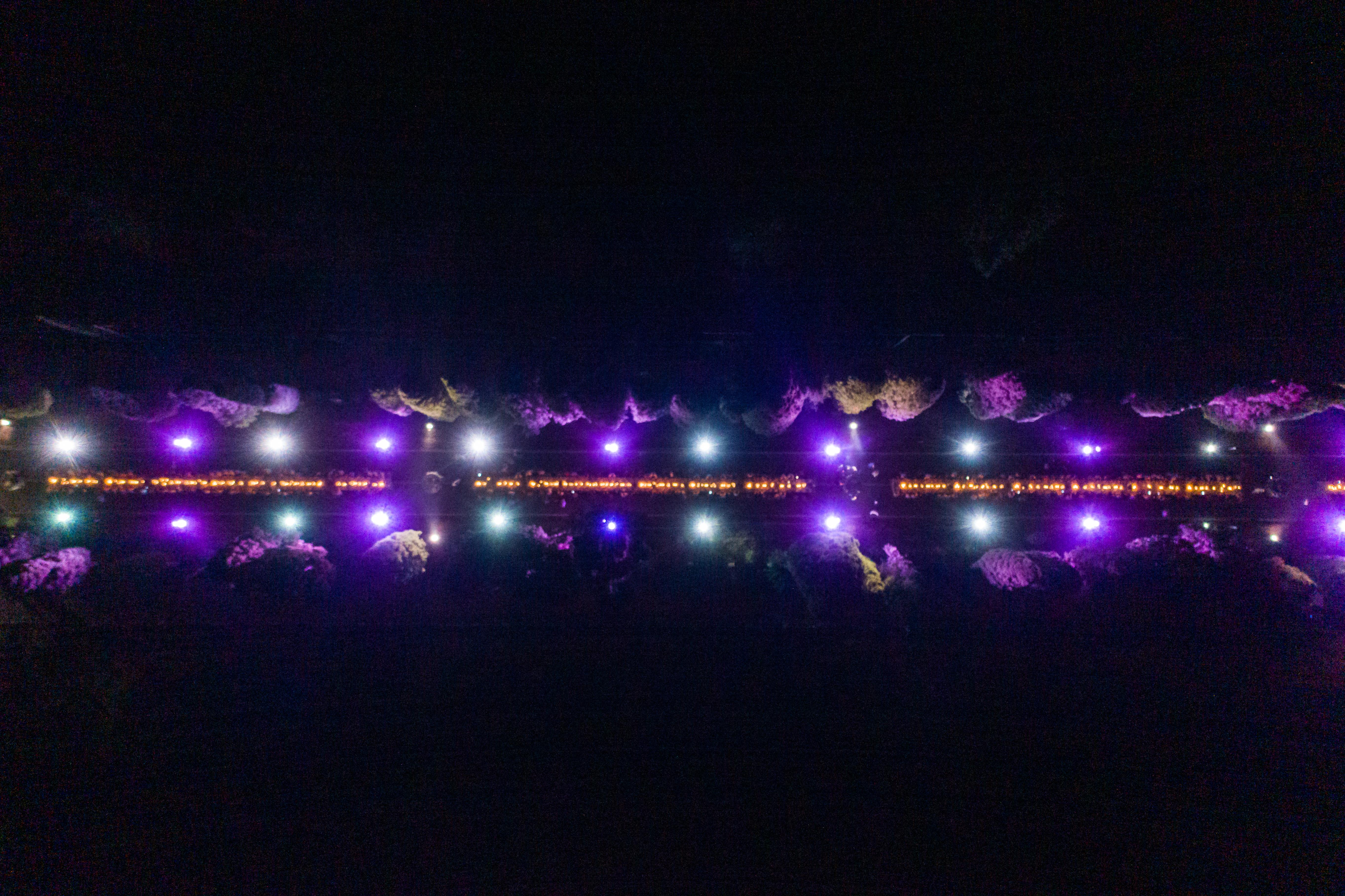 Viale Cipressi illuminato